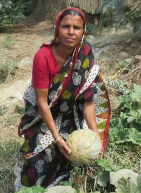 Musahar Indien Armut Gemüse Frau