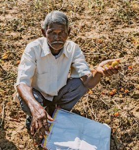 Corona Krise Indien Bangladesch mann auf Feld